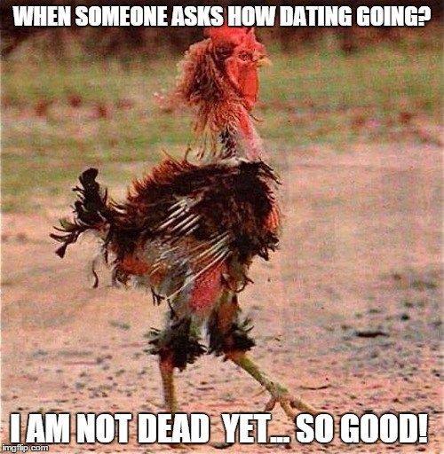 Online dating shenanigans